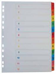 Class'ex tabbladen uit wit karton A4 set 1-12 gekleurde tabs